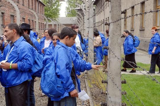 """נער מבקר באושוויץ, 2008 (משה מילנר, לע""""מ)"""