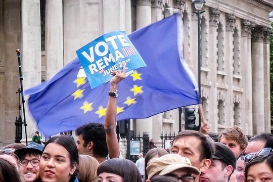 מפגינים בעד הישארות באיחוד האירופי (צילום: Garry Knight פליקר)