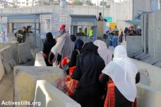 נשים פלסטיניות חוצות את מחסום קלנדיה בדרך לתפילת יום השישי הראשון של חודש הרמדאן. בניגוד לשנים קודמות השנה לא חלו מגבלות גיל על הנשים. 10 ביוני 2016 (אחמד אל-באז/אקטיבסטילס)