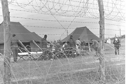לפי דיווחים עשרות שבויים הוצאו להורג על ידי הצבא. שבויי מלחמה מצרים, מלחמת סיני (משה פרידן, אוסף התצלומים הלאומי)