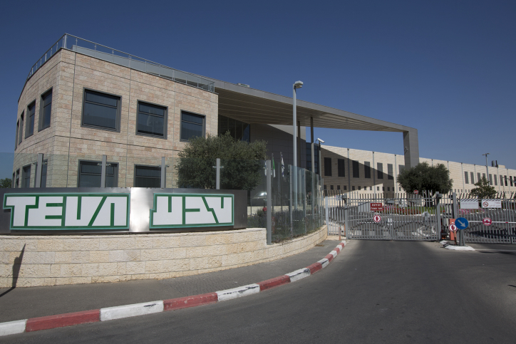 מפעל טבע בירושלים (יונתן סינדל / פלאש90)