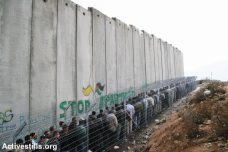 חומת ההפרדה ותור למחסום בבית לחם (אן פאק / אקטיבסטילס)