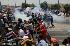 שוטרים מפזרים מפגינים באלימות. מעל לאלף קיבלו טיפול רפואי במהלך עשרת ימי מחאת המגנומטרים (אורן זיו/אקטיבסטילס)