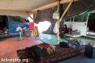 עליה אבו מדיע'ם יושבת באוהל משפחתה, שנבנה מחדש לאחר ההריסה ה-120 של הכפר (צילום: קרן מנור/אקטיבסטילס)