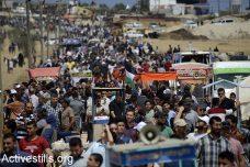 הפלסטינים בעזה מתים לחיות