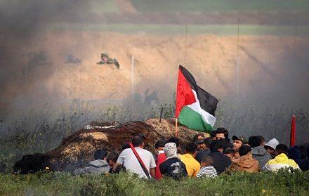 """222 פלסטינים נהרגו מאש חיילים במחאות """"מצעד השיבה"""". 11 מקרים נחקרו. מפגינים בעזה מול הצלפים הישראלים מעבר לגדר. (צילום: עבד רחים ח'טיב/פלש90)"""