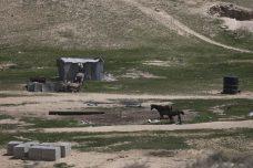 """המדינה מתכננת לרכז את ארבעת היישובים הבדואים בהר הנגב ליישוב אחד. שלושת הכפרים האחרים יהפכו ל""""כפרי אירוח"""". ישוב בדואי בנגב (צילום: הדס פרוש / פלאש 90)"""