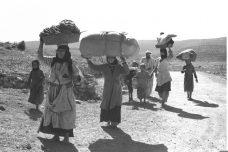 """תושבי הגליל בורחים ללבנון במהלך מלחמת 1948. (צילום: אלדן דוד, לע""""מ)"""