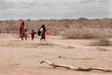 בצורת חריפה במזרח אפריקה מאיימת על חייהם של ילדים רבים באזור (צילום: Colin Crowley/Save the Children)