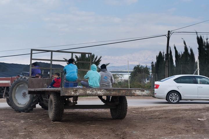 """""""טוב לכולם שהמצב הקיים יישאר בדיוק כפי שהוא. גם בעוד מאה שנה"""". פועלים פלסטינים עובדים בתומר (צילום: רחל שור)"""