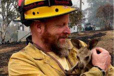 השריפות באוסטרליה: היו אזהרות, ממשלת הימין התעלמה