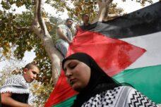 הפלסטינים בחרו בדגל כסמל של זהות, הם לא יורידו אותו