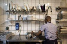 מבקש מקלט מאפריקה שוטף כלים במסעדה, ב-2014 (צילום: ???