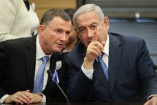 נגיף הקורונה עושה שמות בדמוקרטיה הישראלית