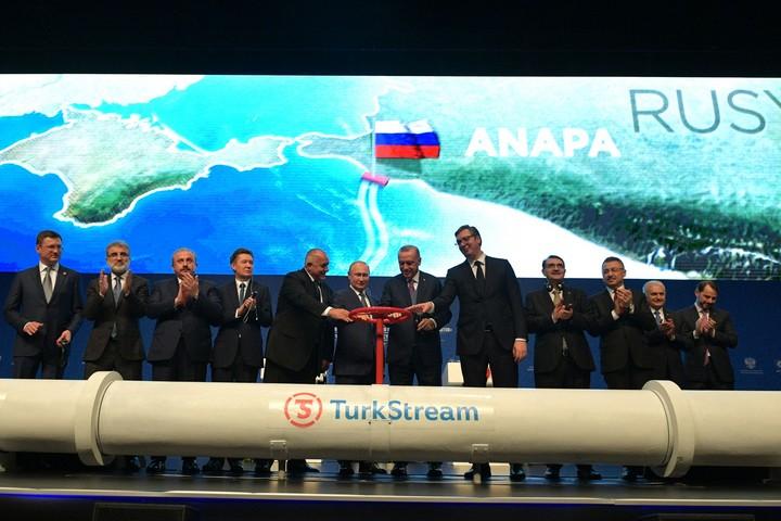 נשיא רוסיה, ולדימיר פוטין, ונשיא טורקיה, רג'פ טאיפ ארדואן, חונכים את צינור תורכסטרים (צילום: הקרמלין)
