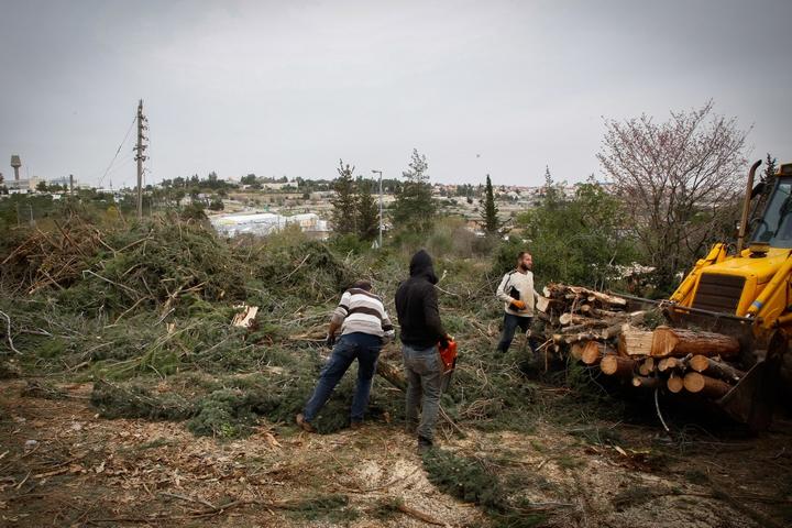 פועלים פלסטינים באתר בנייה בקיבוץ כפר עציון שבגוש עציון, ב-15 בפברואר 2018 (צילום: גרשון אלינסון / פלאש90)