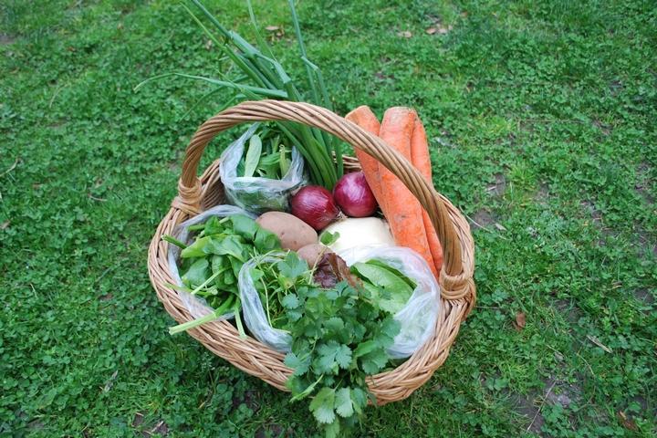סלסלת ירקות (צילום: piqsels)