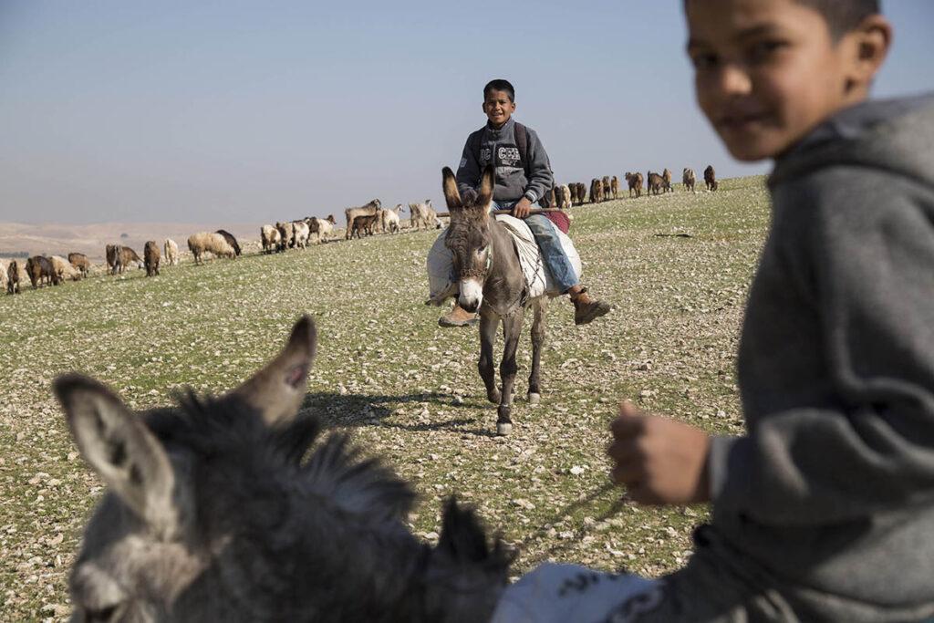 רועים פלסטינים בבקעת הירדן, פרואר 2020 (צילום: קרן מנור / אקטיבסטילס)