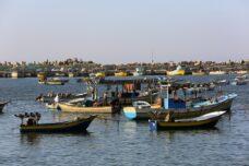 דיווח: עלייה של 70% במקרי הירי של חיל הים על דייגים בעזה באפריל