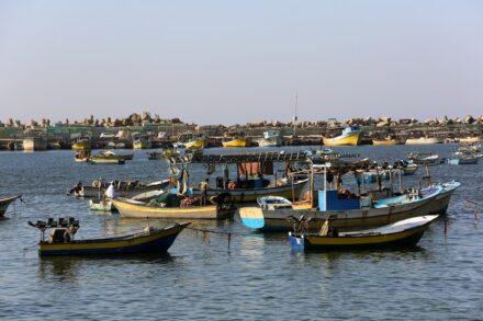 דייגים בנמל בעיר עזה, בנובמבר 2019 (צילום: עבד רחים / פלאש90)