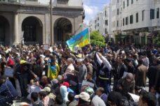 אימוץ התרבות האמזיע'ית עזר למרוקו להיפתח לשכנות שלה באפריקה. מחאה אמזיע'ית במרוקו (צילום: מגרביה CC BY 2.0)