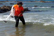 מלחמת ההישרדות של הדייגת הפלסטינית שהפכה לאייקון פמיניסטי
