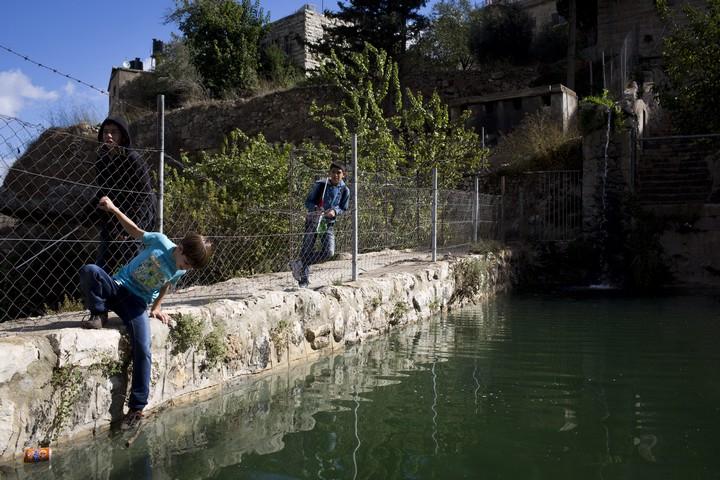 בריכת מים בבתיר. הפלסטינים מספרים שהמתנחלים מתרחצים בעירום בבור המים שלהם (צילום: אורן זיו / אקטיבסטילס)