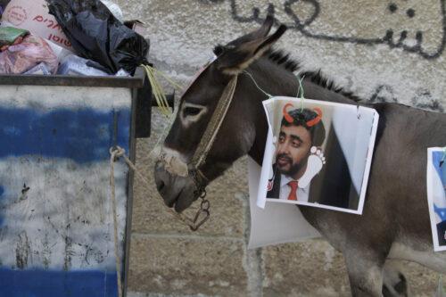 המיליונים ששפכו השליטים במפרץ על תעמולה בעד ההסכמים לא עזרו. מחאה פלסטינית נגד ההסכם עם האמירויות ובחריין ליד שכם (צילום: נאסר אשתייה / פלאש 90)