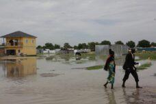 מבזקים מחזית האקלים: שטף אסונות, וקצת חדשות טובות