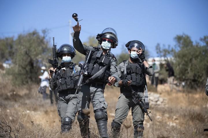 שוטרים משליכים רימון גז לעבר פלסטינים באדמות כפר בוקרא, במקום שבו הותקף אוהד חמו שבוע קודם לכן (צילום: אורן זיו)