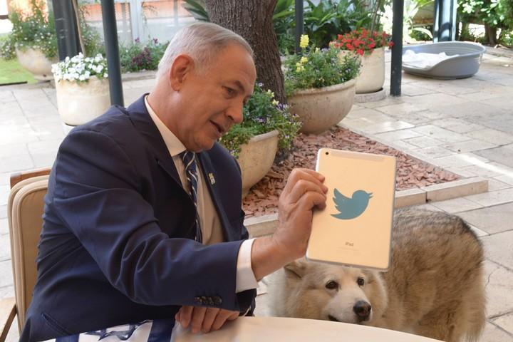 """הרשתות מטפחות אינטראקציה קלילה בינינו לבין הארגונים הפוליטיים שאנו פוגשים שם. ראש הממשלה בנימין נתניהו משיב לשאלות הציבור בטוויטר (עמוס בן גרשום / לע""""מ)"""