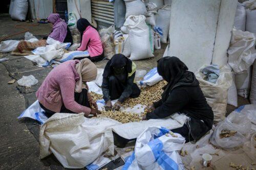 נשים פלסטיניות עובדות במפעל פיסטוקים ברפיח שבדרום רצועת עזה, ב-7 במרץ 2020 (צילום: עבד רחים חטיב / פלאש90)