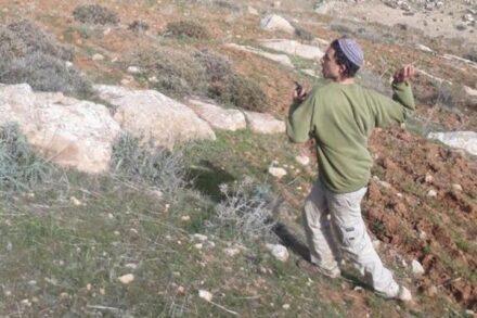 המתנחלים השליכו אבנים על הפלסטינים. מתנחל בעת אירוע התקיפה במסאפר בני נעים (צילום: עלי חמדאן)