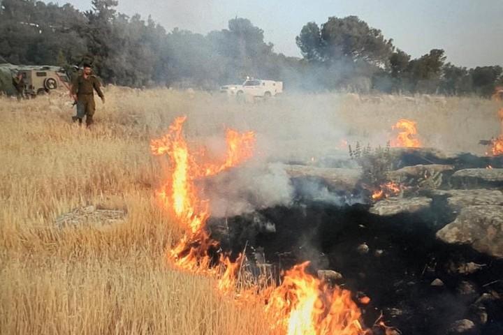 אלימות מתנחלים בדרום הר חברון (צילום: באסל אל-עדרה)