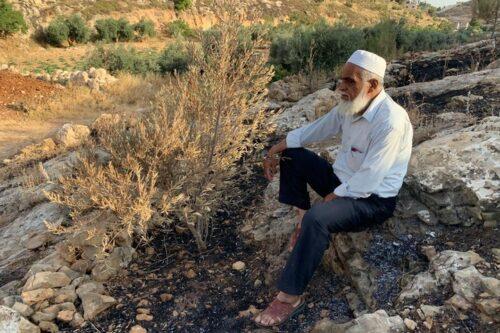 המתנחלים שרפו שדות ועצים בכפר א-ריחיה. כאזם אל חאלק, תושב הכפר, בחלקה שלו (צילום: באסל אל עדרה)