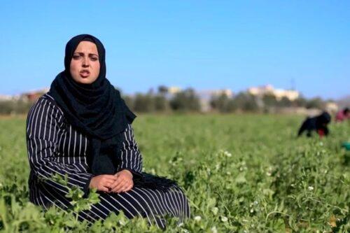 הצעירות מעזה שנאבקות בעוני ובאבטלה דרך השיבה לחקלאות
