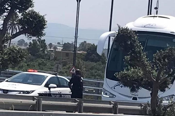 ניידת משטרה בכניסה לעכו, שבודקת את האוטובוסים (צילום: אחמד עודה)