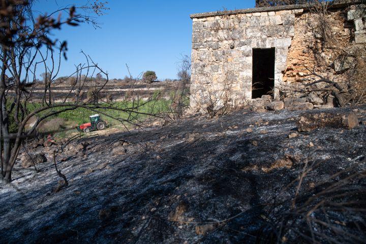 שרידי מבנים בסאריס (למעלה), ושרידי שומרה של סאריס על רקע עיבוד חקלאי של מושב שורש (צילומים: מתן גולן)