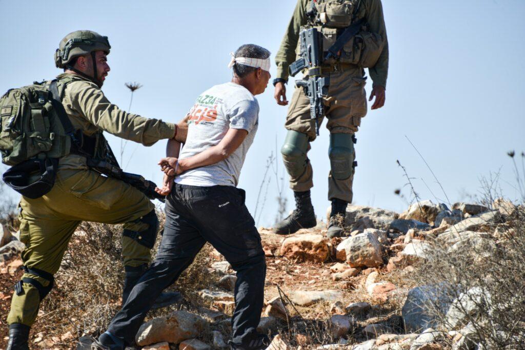 חיילים עוצרים את מוחמד חטיב במהלך מסיק בסלפית (צילום: מתן גולן)